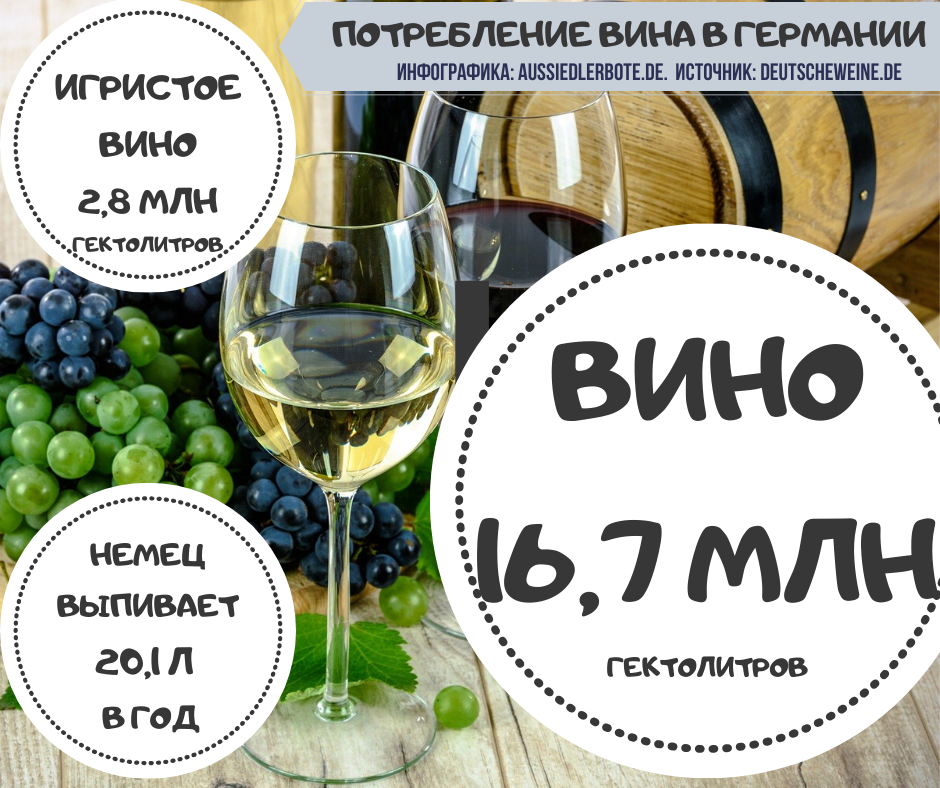 Вино в Германии. инфографика