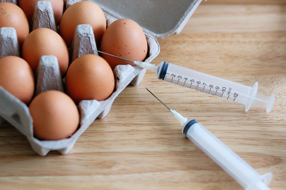 eggs and the needle