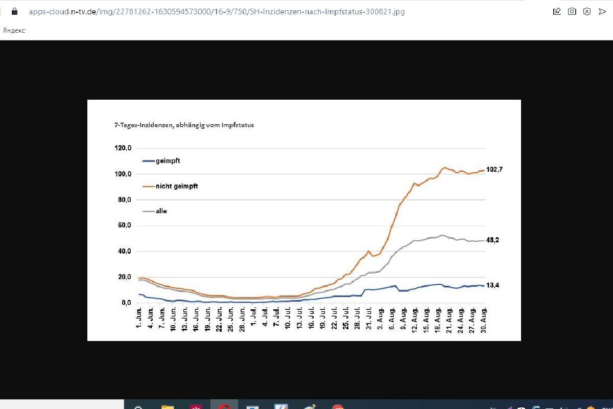 График заболеваемости в земле Шлезвиг-Гольштейн. Скриншот: n-tv.de