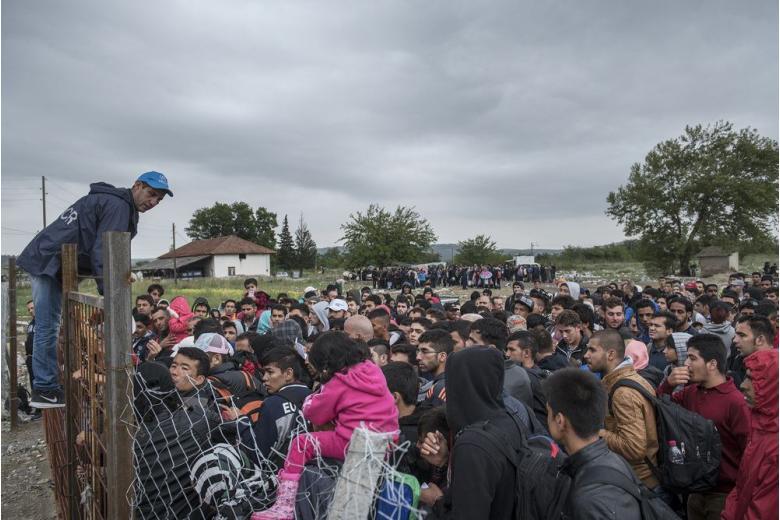 Беженцев много не бывает, а денег – мало… фото 1