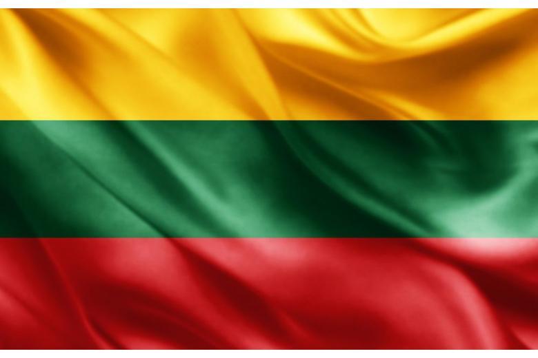 Представительства Литовской Республики в Германии фото 1