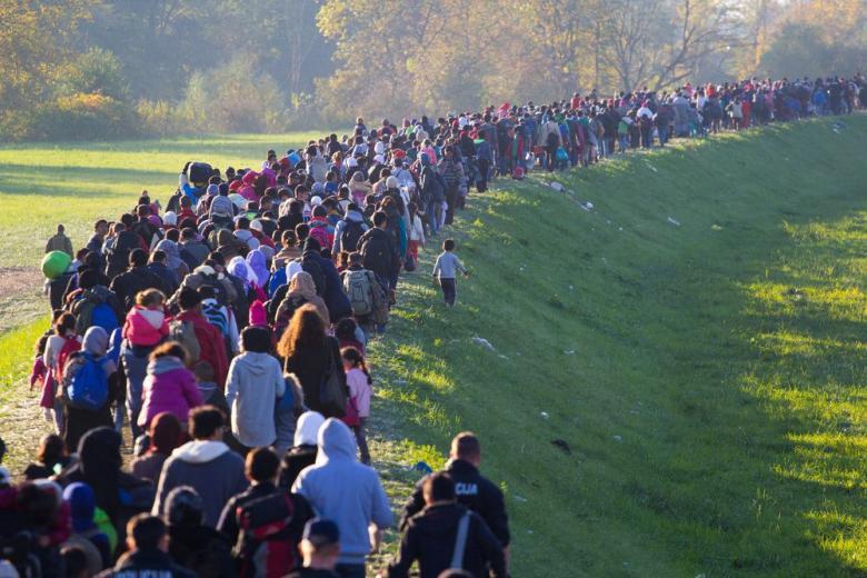 Вырастет ли количество мигрантов из-за воссоединения членов их семей? фото 1