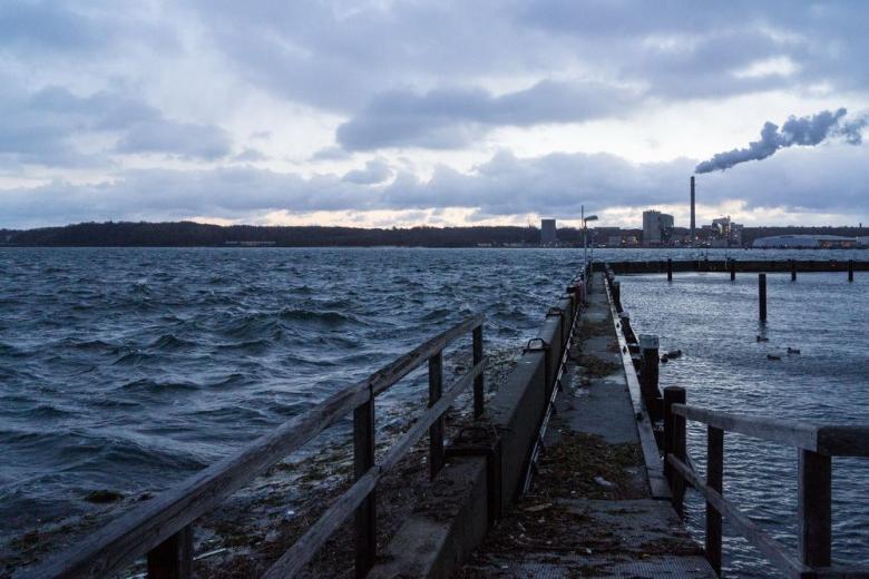 Снова зима: Германия под воздействием циклона «Эгон» фото 1
