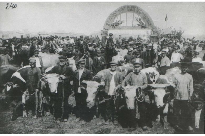 Колонии русских немцев в современном формате фото 1