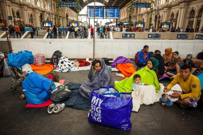 В ФРГ предлагают автоматически предоставлять убежище мигрантам, пострадавшим от радикалов фото 1