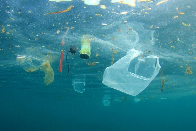 Мусор наступает: в мире насчитывается 8,3 млрд. тонн пластика фото 1