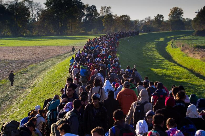Проблемы миграционной безопасности Европейского союза фото 1