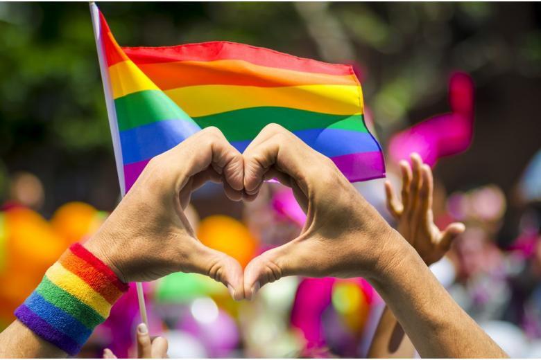 Эксперт по правам сексуальных меньшинств ушел со своего поста фото 1