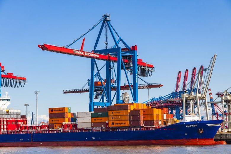 Бонн: как вести международную торговлю без ущерба для природы фото 1