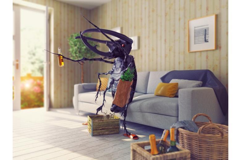 Научно доказано: жуки научат людей не пьянеть фото 1