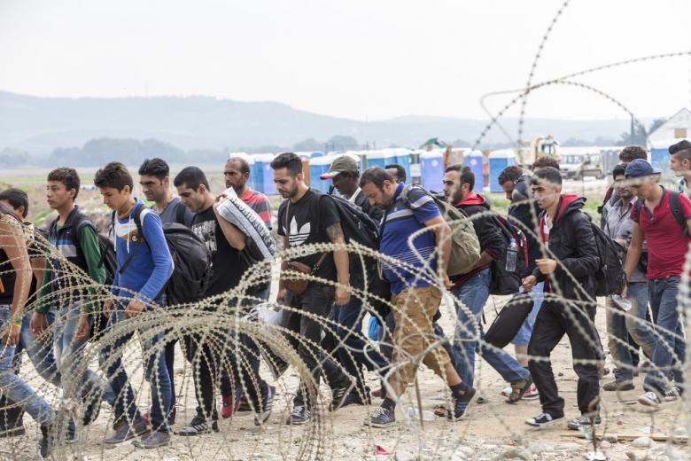 Германия и Австрия объединяют усилия для борьбы с нелегалами фото 1