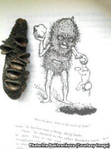 Битва добра и зла на ветке эвкалипта. Столетие сказки Мэй Гиббс фото 4