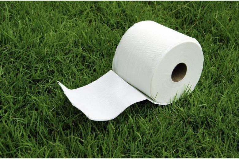 Деньги из туалетной бумаги – как немецкие школьники построили бизнес фото 1