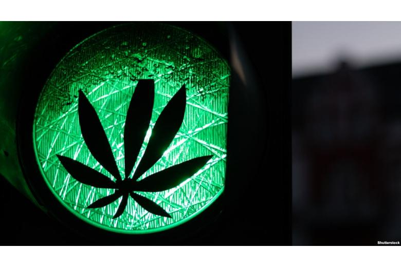 чем опасна марихуана