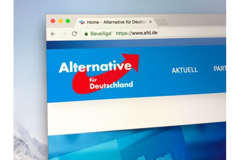 Новые рейтинги партий: АдГ может стать самой популярной политической силой Германии фото 1