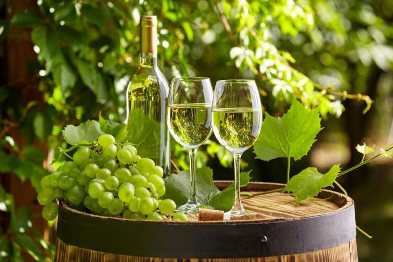 За это стоит поднять бокал: немецкие виноделы бьют рекорды фото 1
