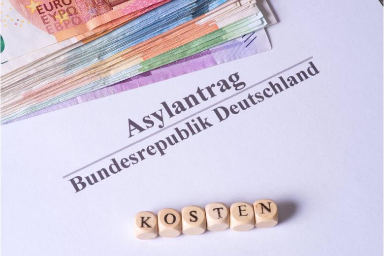 Пособия для беженцев: как не работать и получать 7 тыс. евро в месяц? фото 1