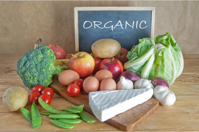 органические продукты в Германии