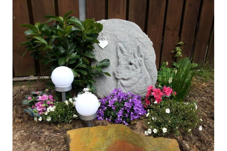 Надгробие на кладбище для животных