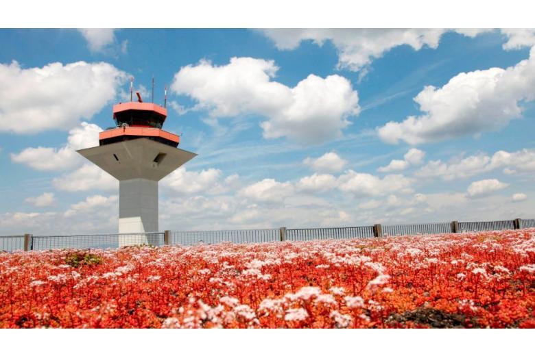 Аэропорт Франкфурта назвали самым полезным для здоровья в мире фото 3
