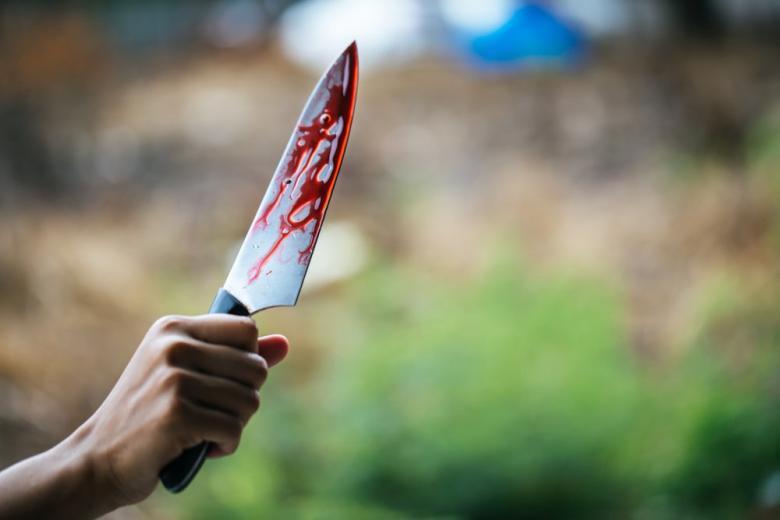 Защитил девушку: в Дрездене беженец ранил ножом 2 человек фото 1