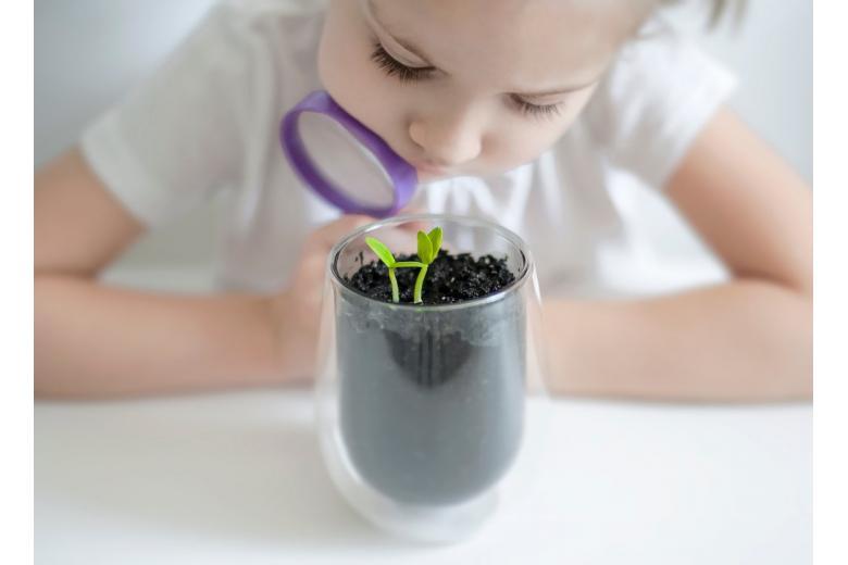ребенок растение