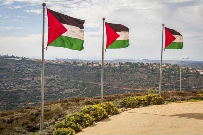 Палестинские флаги