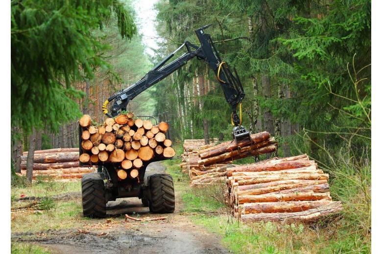 Работа трактора по заготовке дров