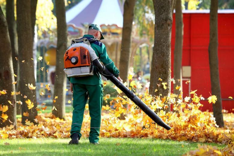 Убирают листья