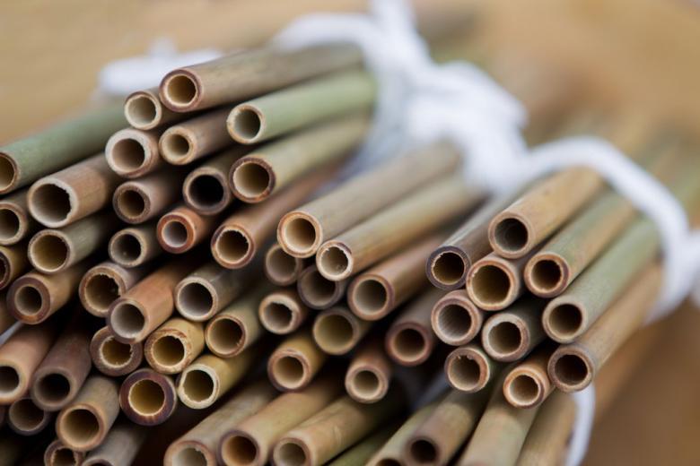 Жизнь без пластика: вГессене будут делать коктейльные трубочки из соломы фото 1