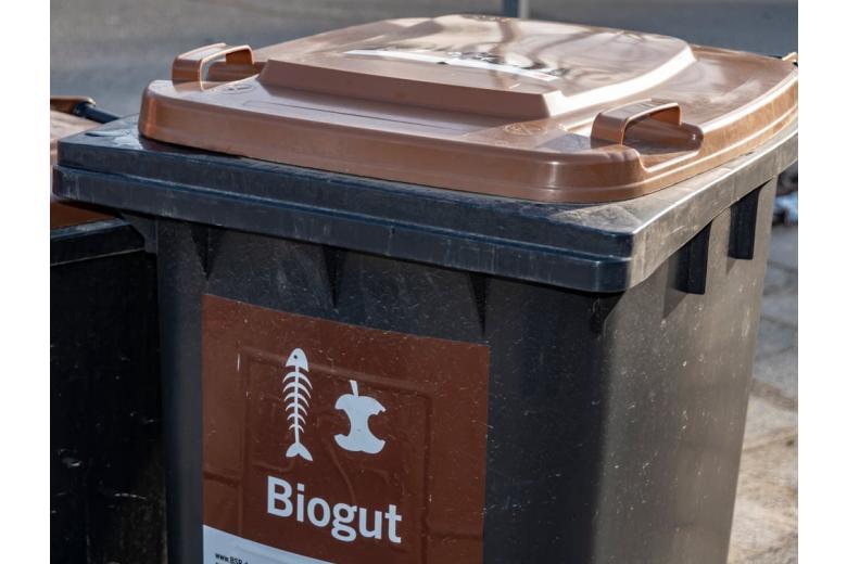 Сортировка мусора, контейнер для биоотходов
