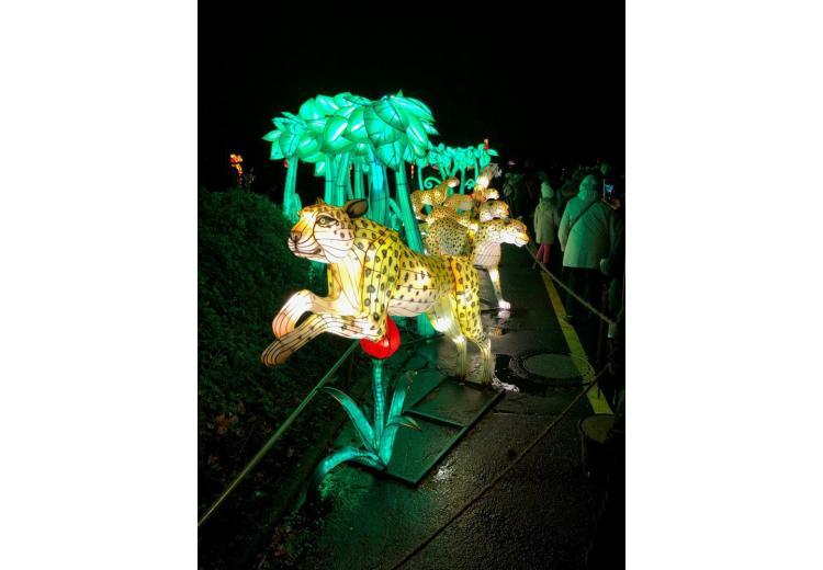 Figures on China Light Festival, Cologne