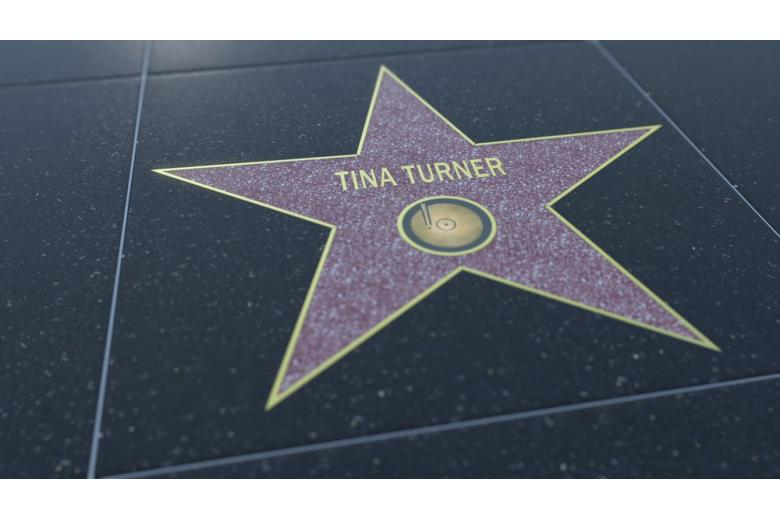 Звезда Тины Тернер