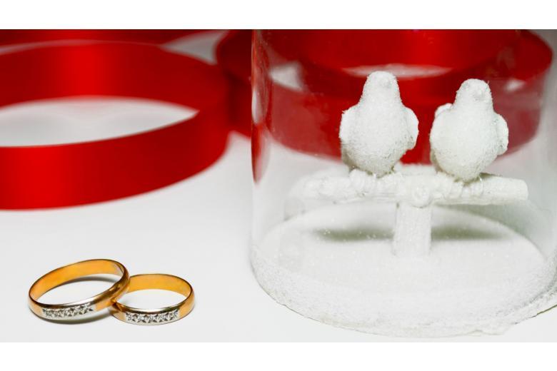 Фиктивный брак в Германии: какие могут быть последствия фото 1