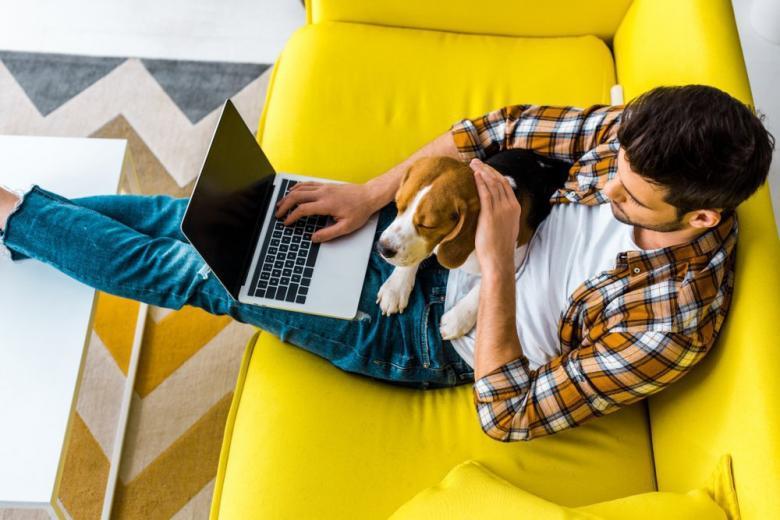 молодой мужчина с ноутбуком и собакой работает дистанционно фото