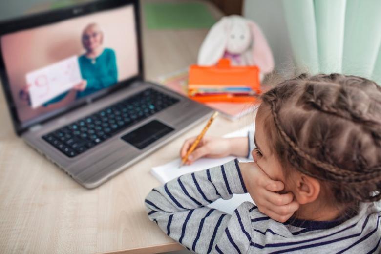 Школьница выполняет урок глядя в ноутбук на учителя фото