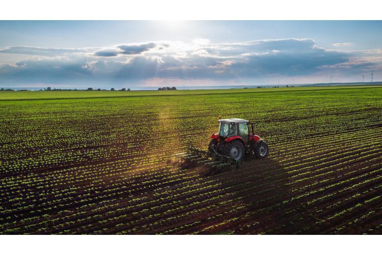 Трактор культивирует поле фото