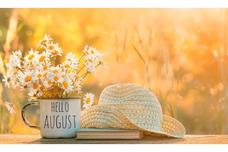 Привет август фото