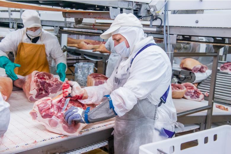 работники на мясоперерабатывающем заводе фото