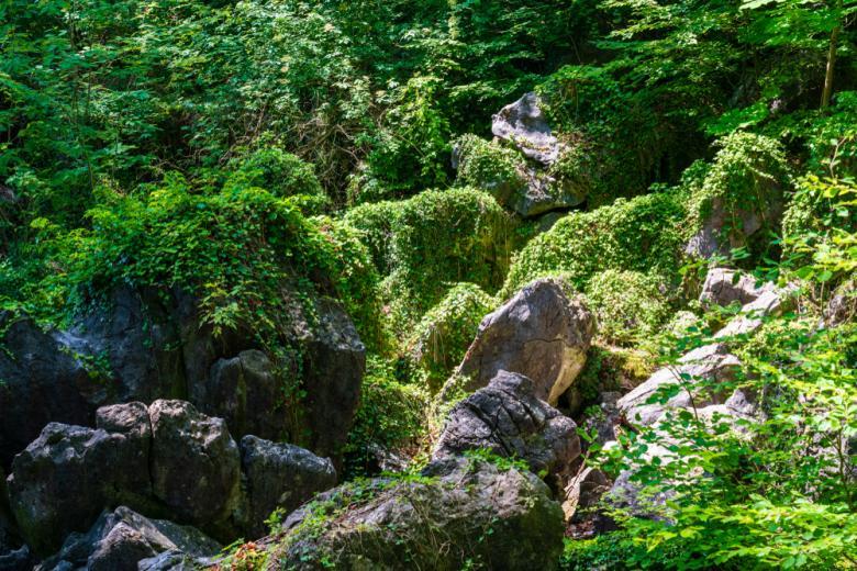 Каменное море фото