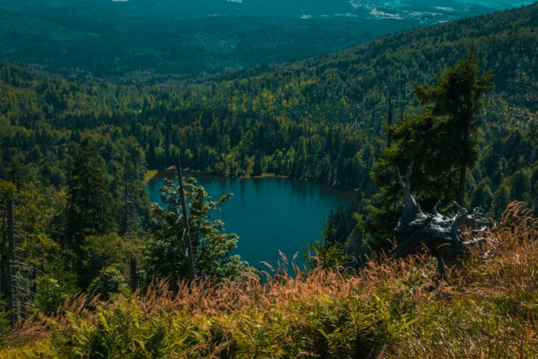 Озеро Рахельзее в Национальном парке Баварский лес фото