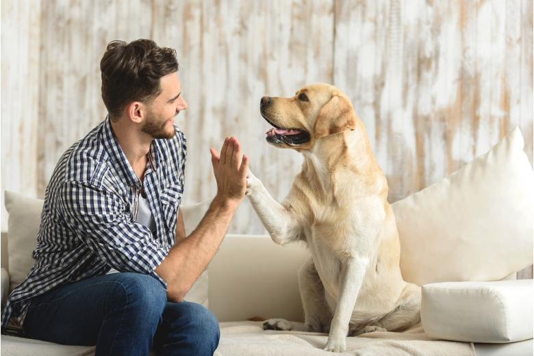 Парень с собакой фото