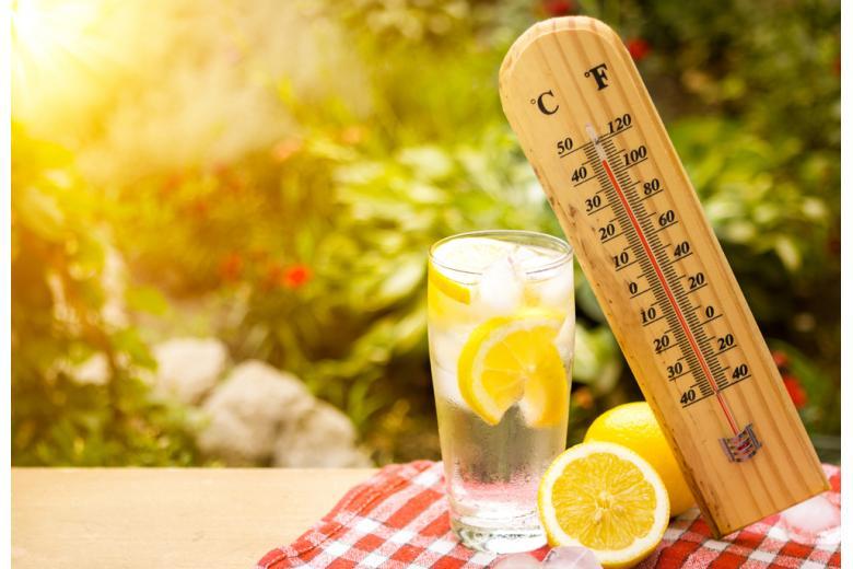 холодный лимонад на солнце фото