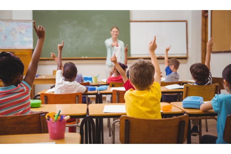 Дети подымают руки на уроке фото