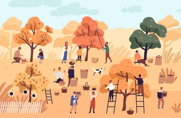 Сбор урожая теперь - бесплатно фото