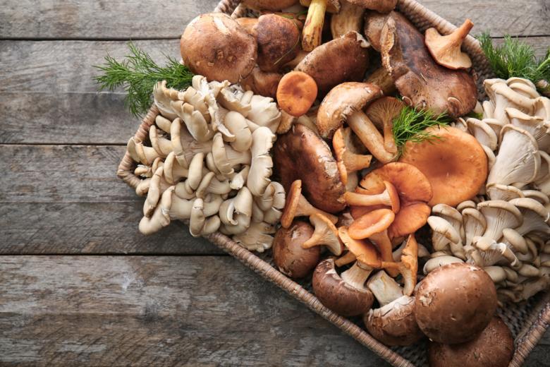 Секреты употребления грибов и их выбора в супермаркете фото