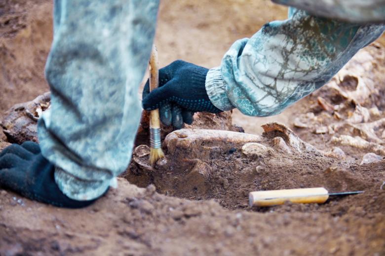 археолог в перчатках с кисточкой в руке снимает землю с останков фото
