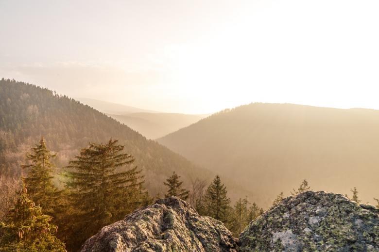 Гора Броккен в тумане фото