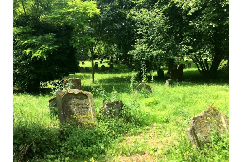 Кладбище евреев в Вормсе фото