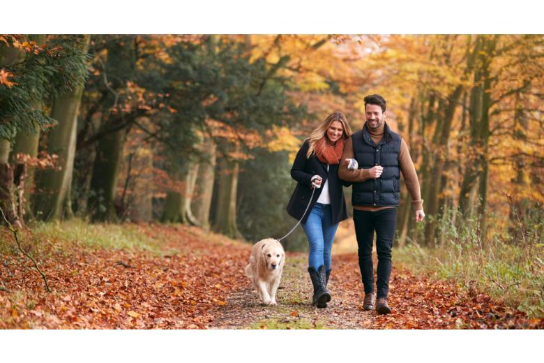 мужчина и женщина гуляют с собакой фото